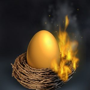 Burning Nest Egg