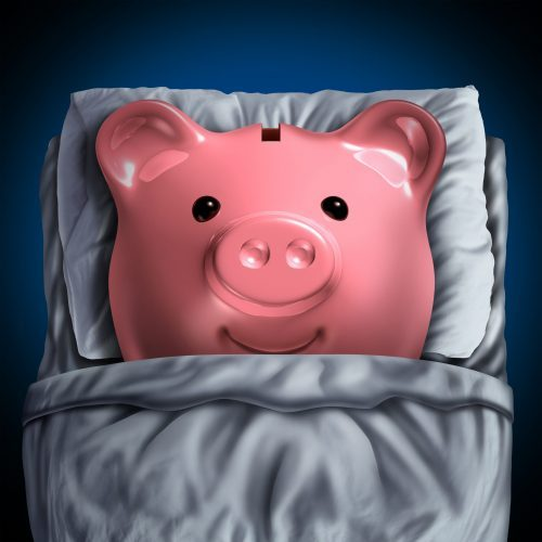 pig in bed